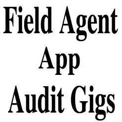 Field Agent Audit Gig Jobs